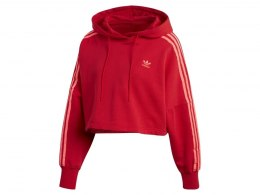 heavenofsport.pl > Bluza adidas Trefoil Hoodie CE2408